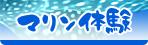 沖縄でダイビングやシュノーケリングなど楽しもう。むら咲むらはマリン体験も充実